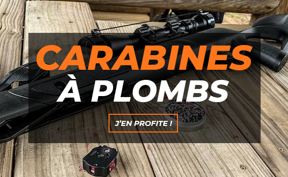 Carabines à plombs
